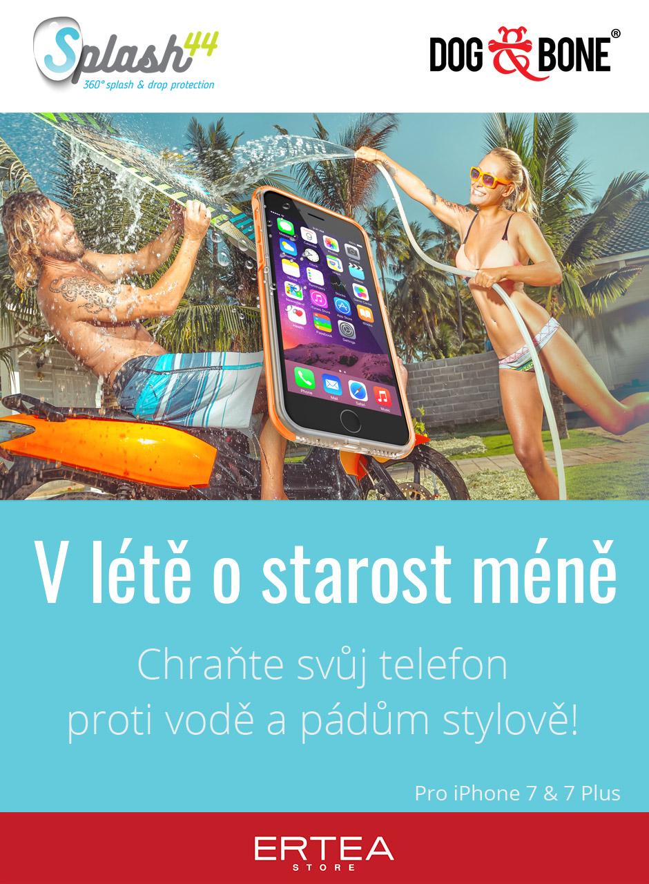 Dog & Bone Splash flyer designed for Ertea Store